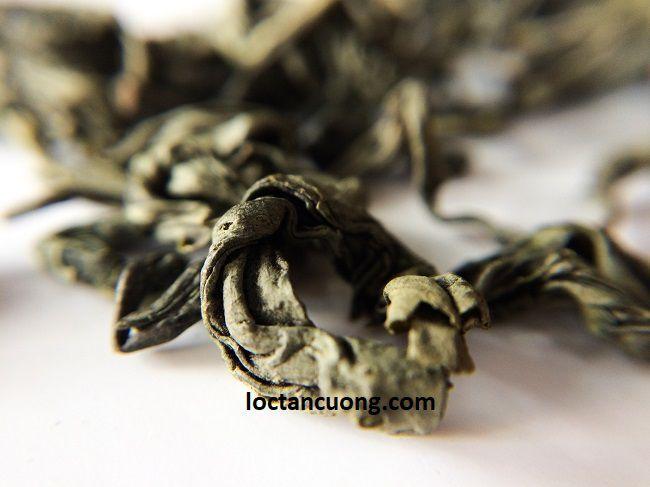 Cánh trà búp Thái Nguyên khá to và dày